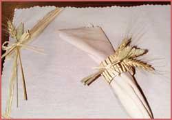placemat/napkin